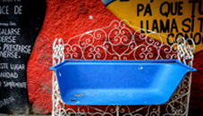Cuba cultural tour of hamel alleyway