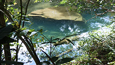 Cuba Nature Explore, flooded caves Cenotes