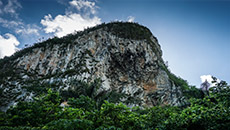 Cuba Nature Watching, Vinales Valley.